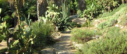 Cagliari Orto Botanico